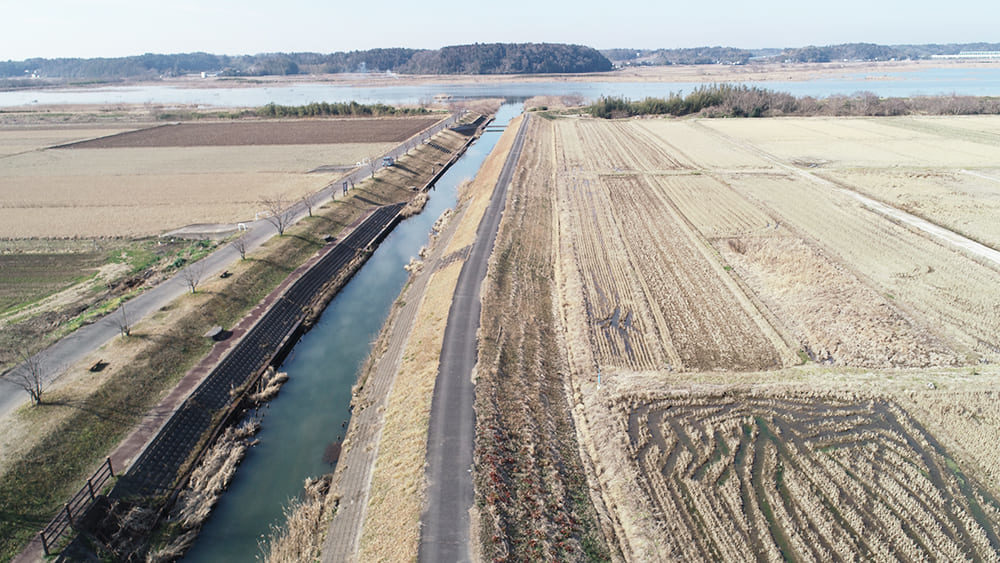 印旛沼 江川