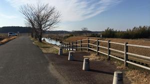 江川・印旛水系3