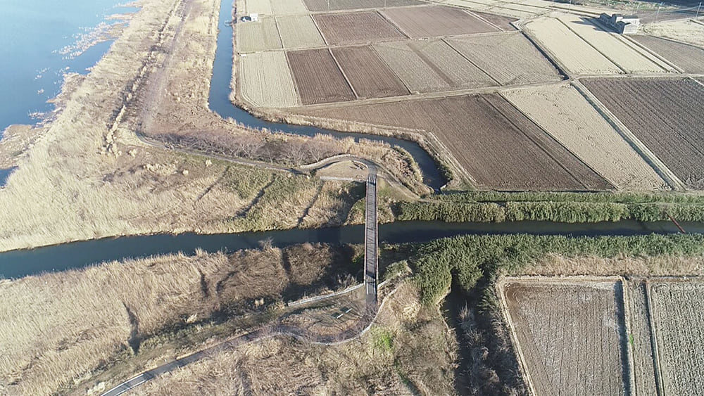 印旛沼 小竹川