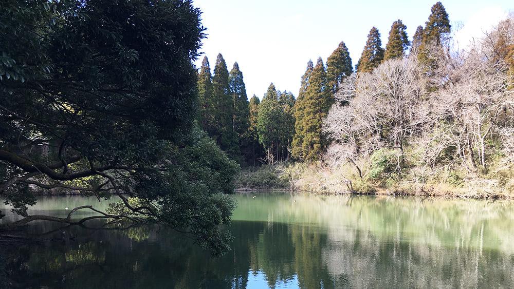 丑ヶ池 新池