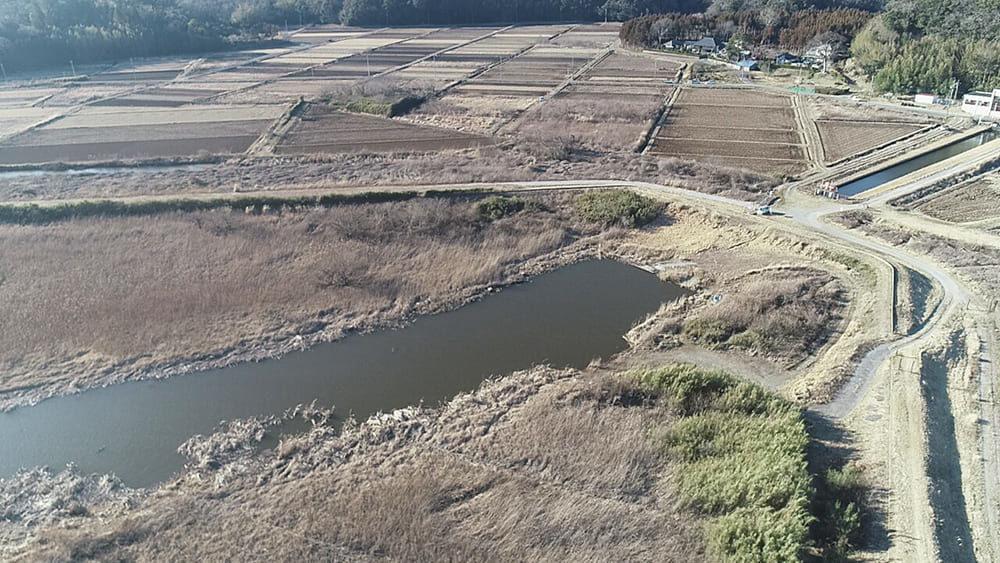 印旛沼・北部調整池 一本松エリア