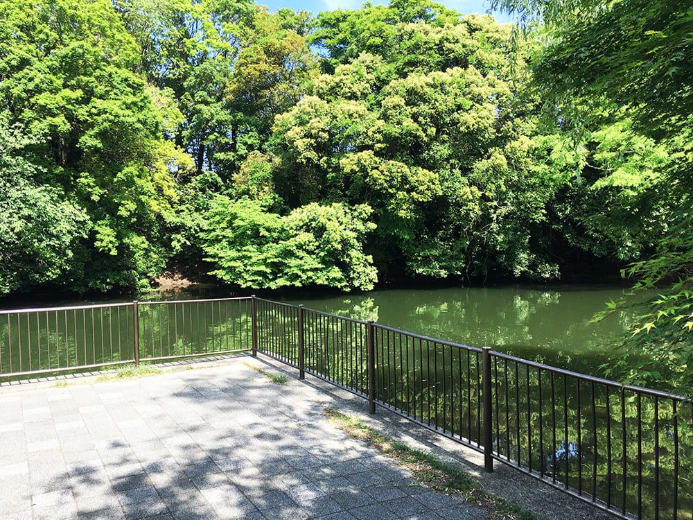 草川原公園