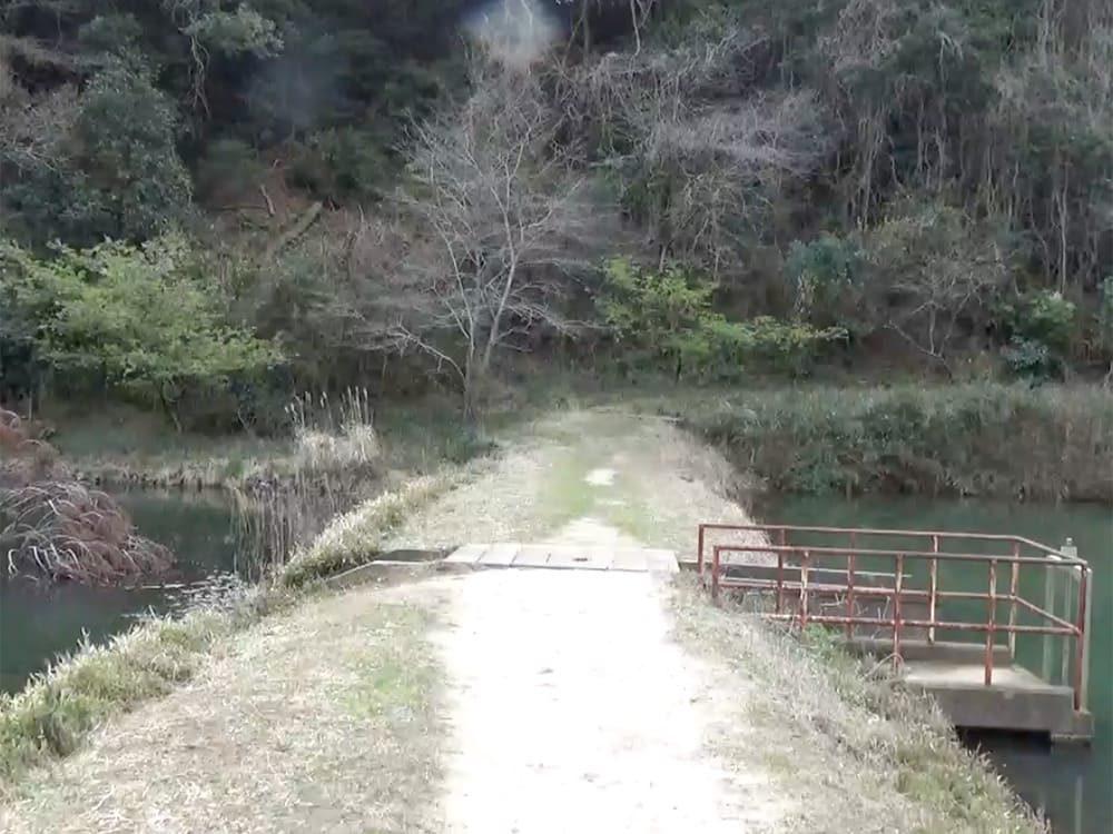 丑ヶ池 境の道