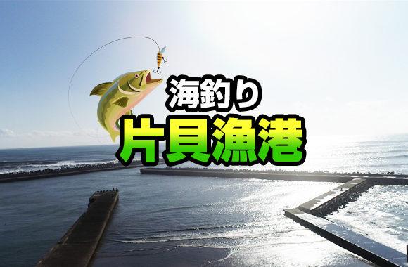 海釣り片貝漁港