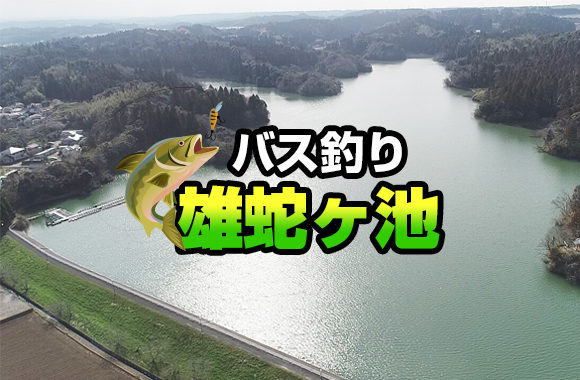 バス釣り雄蛇ヶ池